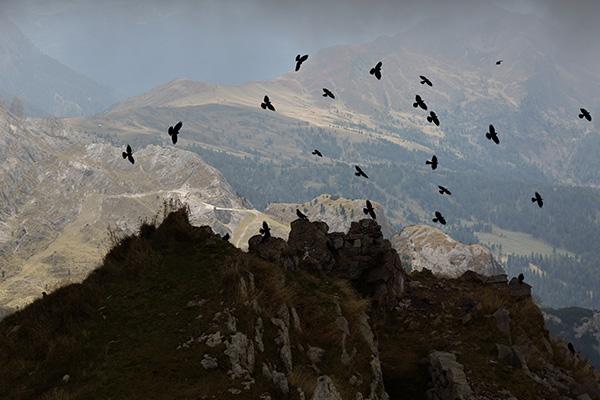 dolomiti-francesca-ricciardi-photographer-italian-dolomites-sudtirol-7-b